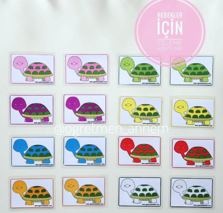 Bebek Eşleme Kartları - Kaplumbağa