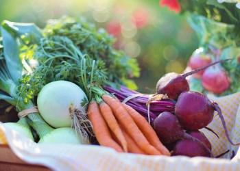 Ek Gıdaya Geçiş Süreci